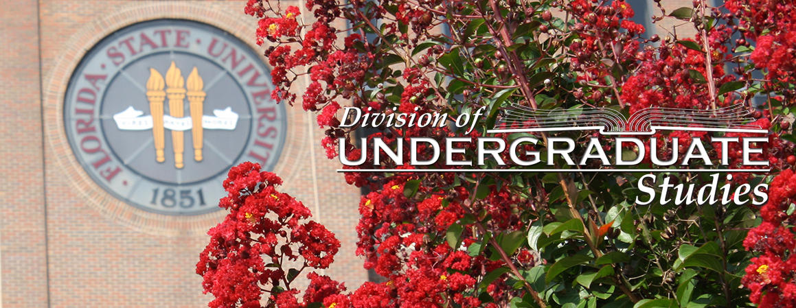 Division of Undergraduate Studies